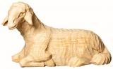 4253 Schaf liegend