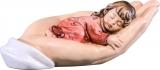 3264 schützende Hand, liegend, Mädchen