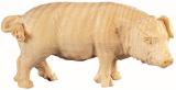 4488 Schwein